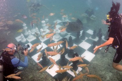 underwater chess.JPG